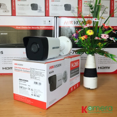 CAMERA IP HIKVISION DS-2CD1021-I