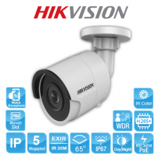 CAMERA IP HIKVISION DS-2CD2055FWD-I