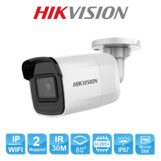 CAMERA IP HIKVISION DS-2CD2021G1-IW